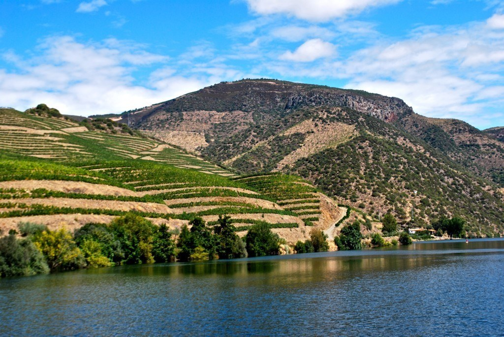 5 Interesting Facts About The Douro River Valley In Portugal  Blonde Brunett