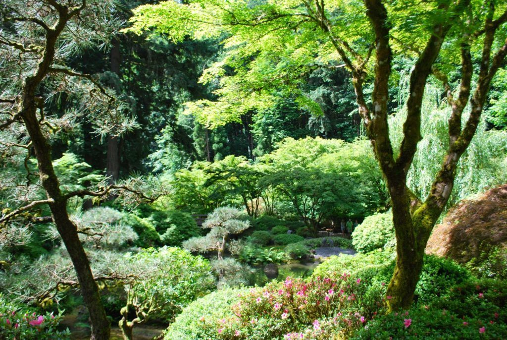 What to do on a weekend in portland oregon for Portland japanese garden free day